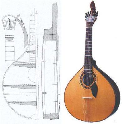 http://www.verdesanos.com/pics/guitar.jpg